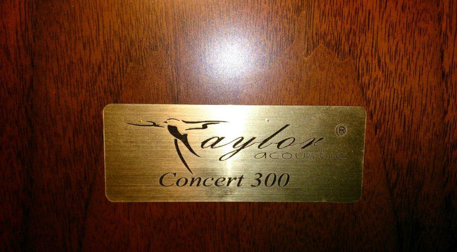 Taylor Acoustic Concert-300 állványos hangsugárzó
